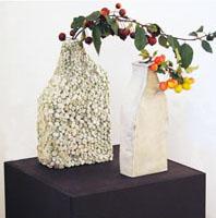 Galerie photo automne