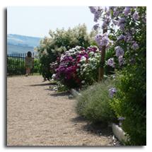 les jardins de la Rejonière